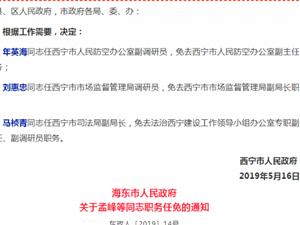 西宁市、海东市人民政府分别任免一批干部(共13人)