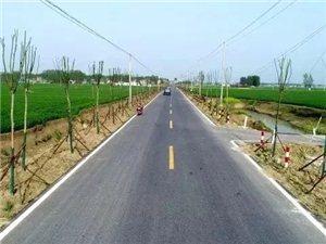 �R岔、姜寨要新建��l�h道,看看在哪?
