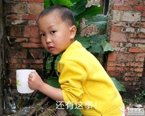 化州某店铺连遭两伙蟊贼盗窃,竟然都是乳臭未干的孩子!
