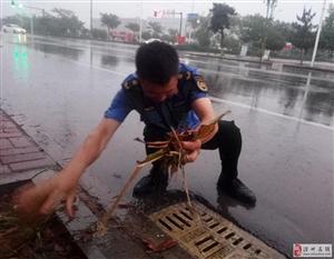雨情就是命令!滑县城管局全力应对强降雨