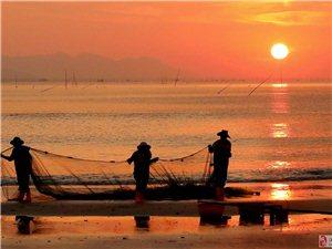 赶海―摄于霞浦。