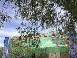 青山村庄,风景如画,游人如织,车水马龙,好戏连台