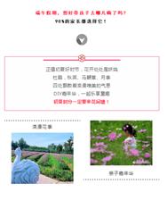 花�g塘・迎端午-�p花最佳季 DIY嘉年�A