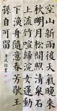 """琼海市第一小学2019年庆""""六一""""毛笔书法比赛作品展"""