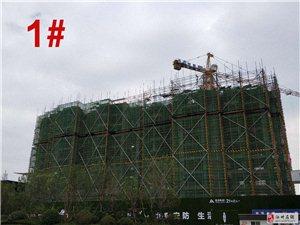 【建业・公园里】六月楼盘最新工程进度!