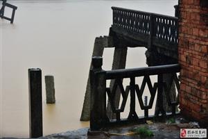 今天榕江水位很高