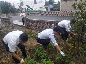 塘湖镇:整治环境卫生,护航自行车赛