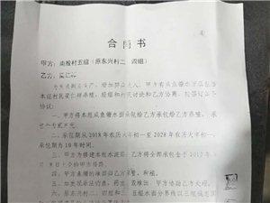 ��名�e�蟾���h板湖�南殷村村���郭乃�x和阜���h法院�绦芯植蛔��