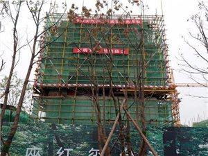 潢川红玺台6月份施工进度,内含面积、户型、价格及优惠政策!