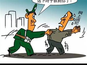 金沙平台网址县公安局文城派出所奔赴异地成功抓获一名逃犯