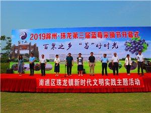 2019年滁州。珠龙第三届蓝莓采摘节圆满开幕