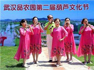 葫芦飘香―武汉品农园第二届葫芦节掠影