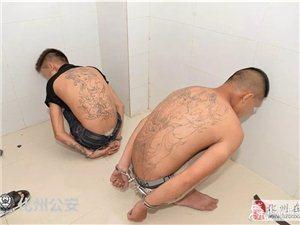 追�:化州警方再出�簦�5嫌疑人被擒...