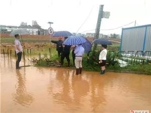 桐城各地:戒备全天候;扎牢安全网;全面防控地质灾害!