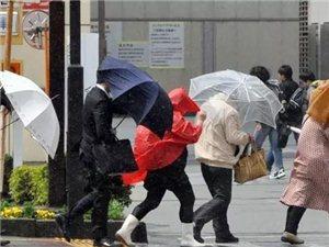 提示|烈日、暴雨当前,得学几条避险法则呀