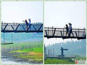 """美翻了!咱驻马店的""""网红桥""""在这里,速来打卡!"""