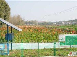 �h中已建�O�r村生活垃圾收集�理系�y254套 192.3�f人受益