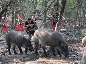 和家人约起去九皇山逮野猪去了