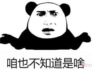 滑�h大型醉酒�F�觯�5男子集�w醉�P街�^
