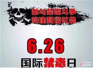 6.26国际禁毒日,旧司镇禁毒知识进校园