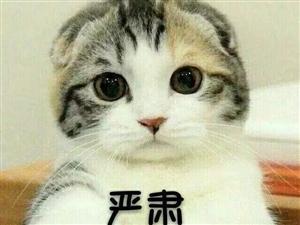 ����公布!�v�R店的�⒛场⑼跄车�42人被�K生禁�{!都是因�檫@...