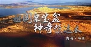 【视频】青海海西州旅游宣传片