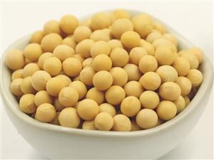 大粒黄豆500g 农家黄豆 非转基因农村老品种大黄豆