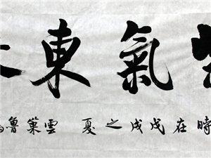 鲁雁书法《紫气东来》
