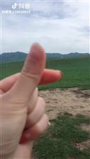 大草原之旅,很美