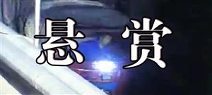 【悬赏通告】固镇一起交通事故,肇事者逃逸!请扩散...