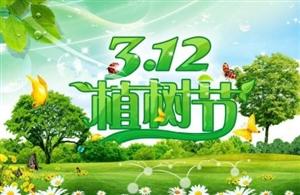植树节 中国植树节的由来和意义,你知道吗?