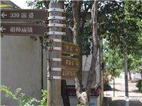 固始这个全国乡村旅游扶贫重点村,藏着青山秀水、淡淡乡愁…