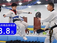 48.8元搶購原價580元飛炫跆拳道體驗課套餐