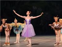 100元抢购原价180元的西施大剧院乌克兰少儿芭蕾舞剧《白雪公主和七个小矮人》门票