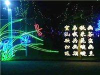 金顶山春节大联欢门票