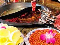 68元搶購(原價116元)火鍋套餐:番茄鴛鴦鍋+精品肥牛+蔬菜拼盤+雙份料碗。約起!