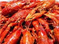 皓興食府丨68元搶購原價179元龍蝦海鮮套餐!吃到手軟!