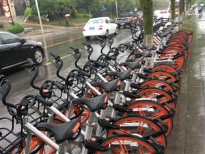 """摩拜单车""""空降""""自贡城管交警拒绝其""""任性""""上路"""