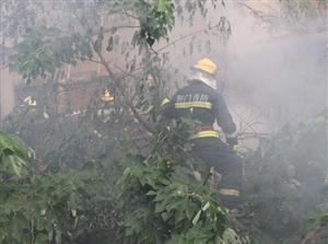 荆门一垃圾堆起火危急居民楼