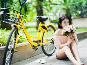 下班后骑着小黄车在绿荫旁的沥青路上散心的甜美女孩!
