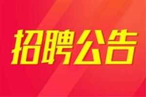 2017年�V��h公�_招聘��雍贤�制幼�航���章