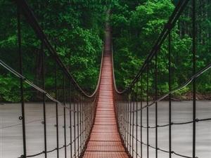 不要想如果,生命中不可承受之情,就在于人生没有重来的机会。