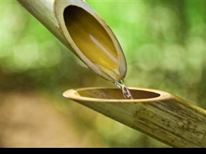 最高境界的善行,就像水的品性一样,