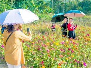 鲜花开满村庄