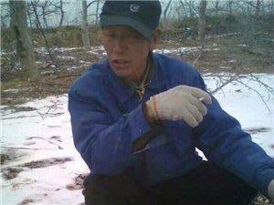 剪果树的男人