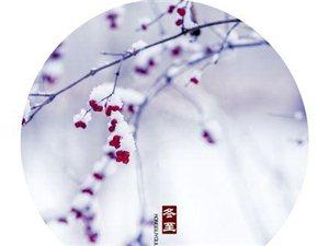 今日冬至:晚�硖煊�雪,能�一杯�o?