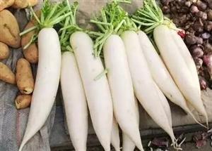 三种萝卜吃法不同,功效也不同,你吃对了吗?