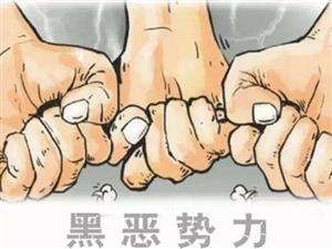 泸州市委书记蒋辅义:重拳出击,坚决扫除各类黑恶势力