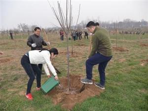 东营市未来四年将新增造林33万亩