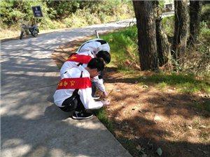 """正能量!南城一中学生志愿者赴麻姑山景区开展""""保卫家乡,我们在行动""""公益活动"""
